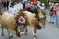 Mayrhofen Almabtrieb Festival