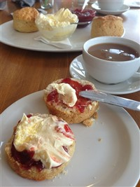 New Forest Cream Tea