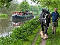 Horse Drawn Canal - Kennet & Avon