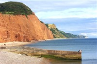 Sidmouth in the Spring