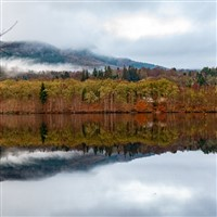 Perthshire Autumn Gold & the Enchanted Forest