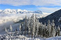 A Tyrolean Winter Wonderland
